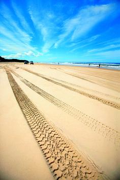 Fraser Island, 200 km north of Brisbane, Queensland, Australia West Australia, Fraser Island Australia, Australia Travel, Queensland Australia, Brisbane Queensland, Tasmania, Patrol Y61, Snapchat, Rainbow Beach