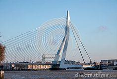 Skyline of Rotterdam, Erasmus bridge