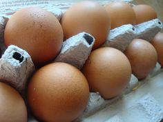 Himmelske kager: Tips til lagkagebunde-bagning