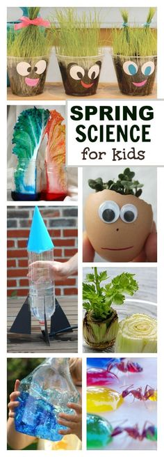 SPRING SCIENCE FOR KIDS- 30 FUN ACTIVITIES! Science Fair Projects, Science Experiments Kids, Science For Kids, Science Art, Art Projects, Plant Science, Biology For Kids, Summer Science, Science Biology
