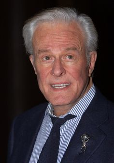 """Robert Culp -- (1930-2010). Actor/Scriptwriter/Voice Actor/Director.  He played Kelly Robinson in """"I Spy"""", FBI Agent Bill Maxwell in """"The Greatest American Hero"""", Warren Whelan in """"Everybody Loves Raymond"""". Movies -- """"I Spy Returns"""" as Kelly Robinson, """"The Pelican Brief"""" as the U.S. President. He died of a Heart Attack."""