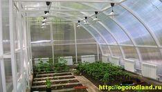Зимняя односкатная теплица. Wie Macht Man, Conservatory, Places, Garden, Alaska, Google, Green Houses, Agriculture, Pictures