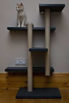 Make Your Own Cat Trees, Towers, and other DIY Cat Structures