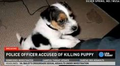 #PETITION #NEEDS #SIGNATURES !!! PLEASE SIGN AND SHARE!! Fire Police Officer Alec Eugene Taylor for Animal Cruelty