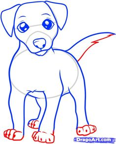 how to draw a jack russell terrier step 6