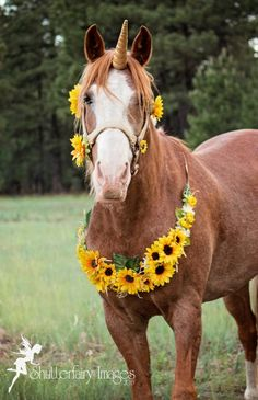17 Best Unicorn Horns By Rustic Horseshoe Images Unicorn Horn For