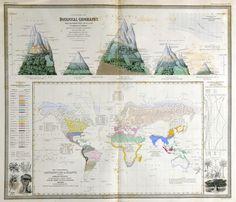 johnston-map-botany.jpg (2923×2505)