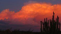 Cada minuto es un milagro que no se repite. #atardecer #Sonora #Mexico  Fotografía por : Claudia Peraza