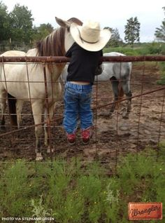 Just horsin' around. #WranglerInTraining #LongLiveCowboys