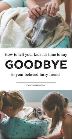 The decision no one wants to make: How to know when it's time to put your dog down and how to tell the kids. Be prepared with just the right words so you can get through this heart wrenching moment. This approach is perfect.:
