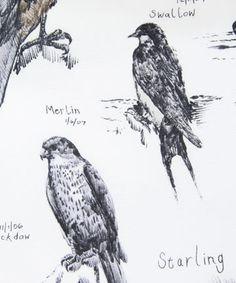 Ornithology Liberty print fabric