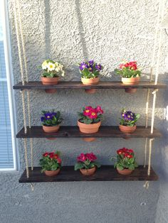 Hanging garden rope shelf. So cute. Great for growing things in small spaces like an apartment patio.