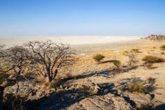 View from Kubu Island in Makgadikgadi Area Stock Photo