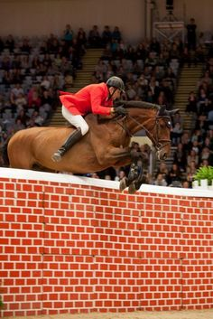 Ireland's John Hickey winning the bareback Puissance competition at Oslo [October 15th, 2011] with Cactus.