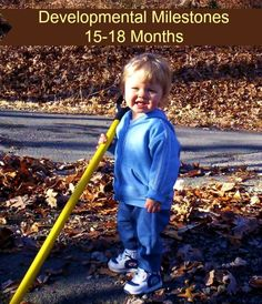 Developmental Milestones 15-18 Months