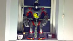 Timelapse Flowering Daffodil Guarded By Robosapien Robot
