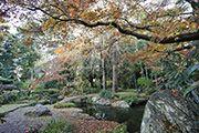 photo gallery 冨士大石寺顕正会 公式サイト 庭園 四季