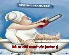 There are very few negatives to spring, but if I had to pick one, it'd be bidding adieu to the fact that no one knew how hairy your legs… Funny Texts Jokes, Text Jokes, Funny Memes, Funny Christmas Cards, Christmas Humor, Funny Illustration, Funny Couples, Me Too Meme, Work Humor