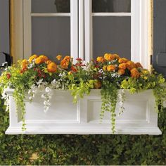 Window boxes are such a beautiful way to garden. They look great from the outside, and I love looking out and seeing flowers from the inside too.