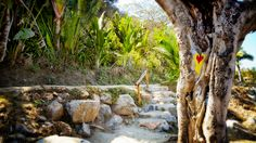 These steps lead from the beach up to the road to Los Muertos
