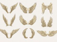 What type of wings do you have