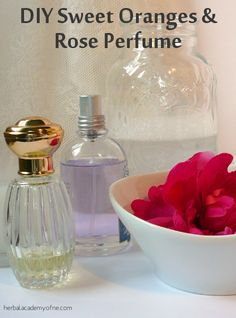 DIY Sweet Oranges & Rose Perfume - Herbal Academy of New England Homemade Beauty Recipes, Homemade Beauty Products, Diy Products, Rose Perfume, Perfume Oils, Essential Oil Perfume, Essential Oils, Homemade Perfume, Perfume Recipes