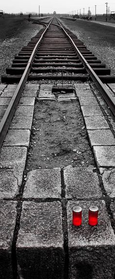Auschwitz  www.victorbergman.com
