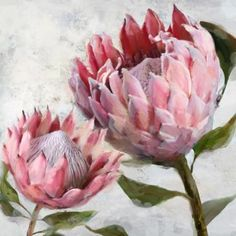 03 Protea I Oil Painting Protea Art, Protea Flower, Mirror Canvas, Canvas Art, Watercolor Flowers, Watercolor Art, Large Floral Wallpaper, Australian Native Flowers, King Art