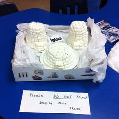 Marshmallow igloo school project...