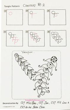 camreap-steps-asian-czts.jpg (500×786)