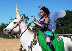 Garden Fairy and Her Unicorn