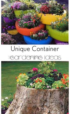 Unique Ideas for Container Gardening- Great Tips and Tricks and unlikely items that can be used for container gardening.