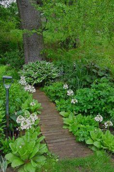 Woodland Garden 11 - fancydecors