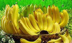 Banana diet for weight loss . banana diet for weight loss.Lose weight by bananas currently is weight loss methods are many women choose.Banana diet plan for weight loss Healthy Fruits, Healthy Life, Healthy Recipes, Healthy Food, Healthy Beauty, Stay Healthy, Healthy Living, Belive In, Banana Health Benefits