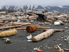 These are general instructions for what to do if you encounter unusual marine debris on a shoreline or at sea. Marine Debris, Nuclear Disasters, Environmental Change, Boat Safety, Fukushima, Clean Up, Ocean, Boating, Conservation