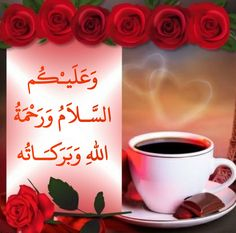 Good Morning Msg, Good Morning Coffee, Good Morning Images, Islamic Messages, Islamic Quotes, Smocking Baby, Islam Muslim, Doa, Beautiful Birds