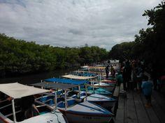 Muelle Parque Nacional Laguna de la Restinga