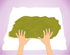 how to dry and preserve moss