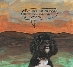 Try not to always be thinking like a human. – Michael Lipsey