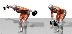 Dumbell rear lateral raise