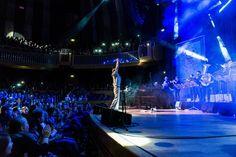 New Fall Festival 2015 mit neuen Zuschauerrekord