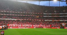 A Minha Chama: 2017/2018 - 25ªJ: SL Benfica 5 Marítimo 0