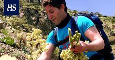 Iranissa raparperia käytetään suolaisissa ruuissa ja lääkekasvina. Villiraparperia kerätään vuorilta, ja kerääjiä uhkaavat kyyt, miinat ja lumivyöryt. Rasoul Khorram kuvasi raparperin kerääjiä kurdialueella vuoden 2017 keväällä.