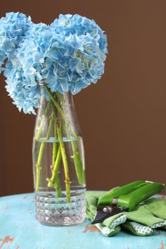 Every professional florist knows that the methods used to cut flowers and condition their stems can significantly extend their vase life. Here are a few easy tricks that will help you lengthen the life of the flowers you cut from your own garden.