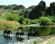 Saguaro Lake Ranch Trail Rides outside Phoenix, AZ.