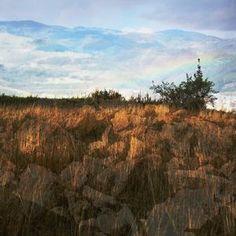 between sky, rocks and grass