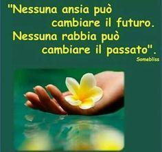 Nessuna ansia può cambiare il futuro ... nessuna rabbia può cambiare il passato!