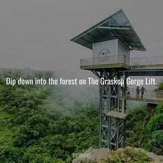 Experience the brand new Graskop Gorge Lift in Mpumalanga that takes you on a journey down into amazing thick forests : Stuff To Do, Things To Do, Forests, South Africa, Bucket, Journey, Building, Amazing, Creative