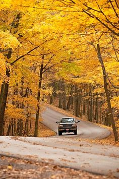 Fall drive along Indiana's Arts Road 46. Details: http://www.midwestliving.com/travel/around-the-region/25-ultimate-fall-drives/