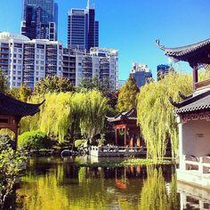 Our view from afternoon tea with @zanitazanita - Chinese Garden of Friendship, Sydney - @garypeppergirl- #webstagram